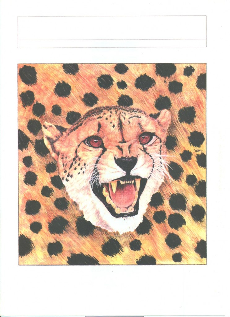 ghepardo acquarello e matita