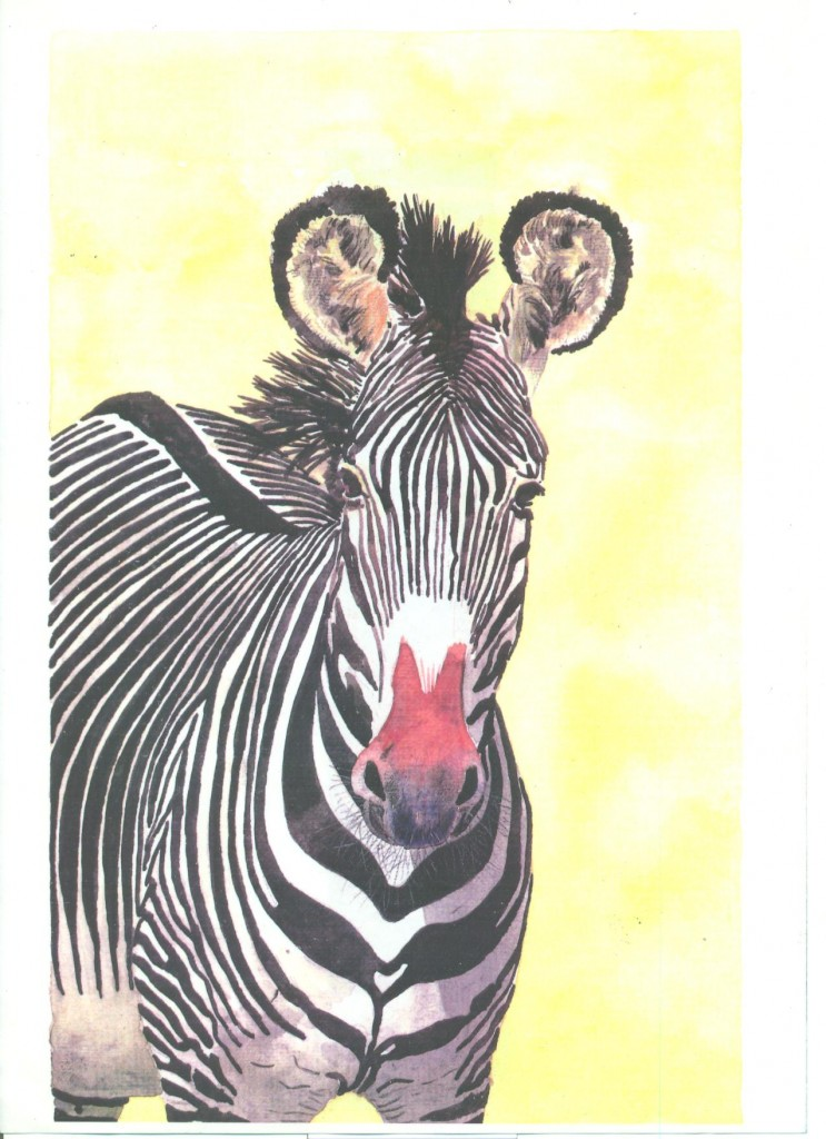 zebra acquarello